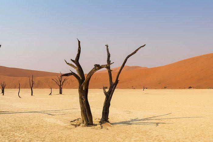 ALLA SCOPERTA DELLA NAMIBIA