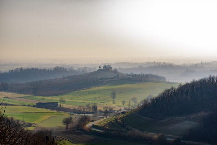 Piemonte: cavalli e vino nel Monferrato