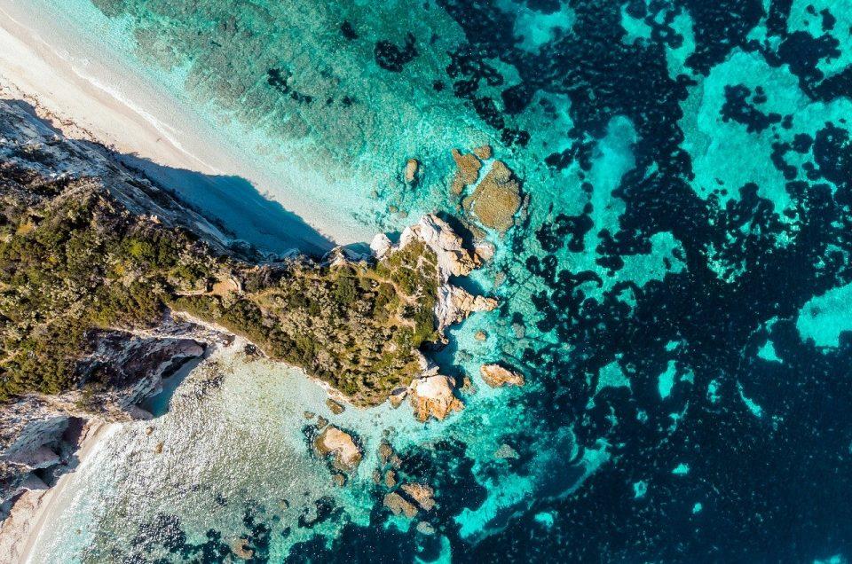 Le spiagge più belle dell'Isola d'Elba?