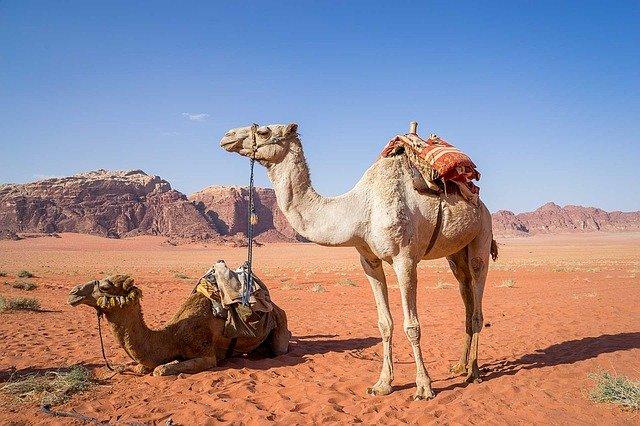 CAPODANNO nel DESERTO